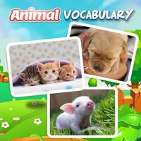 Learn Animal Vocabulary Eng