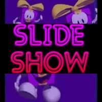 The Slide Show