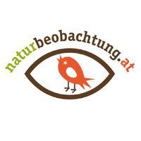 naturbeobachtung.at