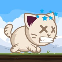 Cat Bouncing