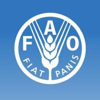 FAOnow