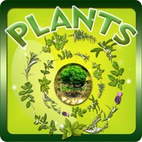 Plants Tutor