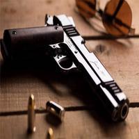 مكتبة الاسلحة النارية