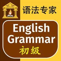 语法专家 : 英语语法 初级