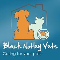 Black Notley Vets Surgery