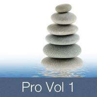 Entspannung Pro Vol 1