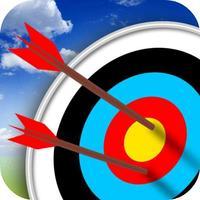 Archer Match Arrow Cup