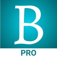 BlinkBook Pro - Book Summary