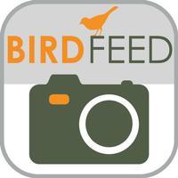 Pocket Ranger Bird Feed™