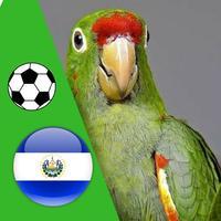 El Perico - Fútbol de Santa Tecla, El Salvador