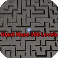 Giant Maze 100 Levels