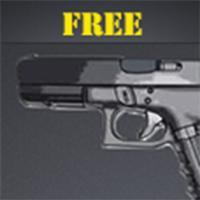 Gun Sounds - HD Quality!