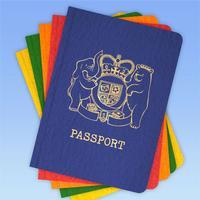 Toy Passport