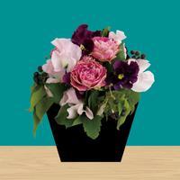 Flower - room escape game -