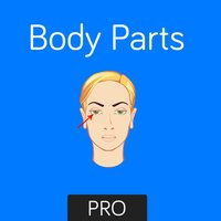 Body Parts Flashcard for babies and preschool Pro
