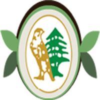 alsayyadi