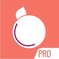 StylePlum Pro