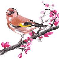 Watercolor Bids Art Stickers