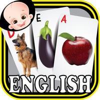 Pre-K Kids ABC Alphabets & Numbers Flash Cards