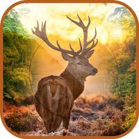 3D Ultimate Deer Hunter - Hunt Stags in Multiple Hunting Seasons to Become The Best Deer Hunter