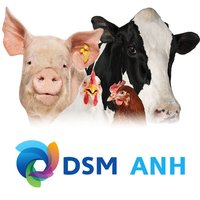DSM ANH Product Support 2.0
