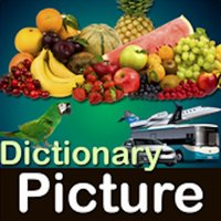 Picture Dictionary - Pro