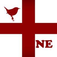 Bird Scholar New England
