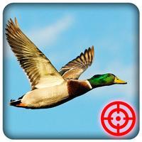 Duck Hunting Season: Wild Bird Shooting 3D