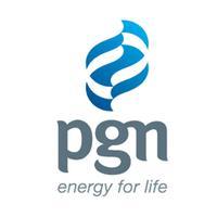 PGN SR 2015