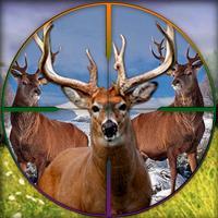 Wild Deer Challenge - 2017