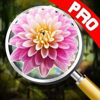Hidden object: Mystery park pro