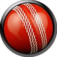 Cricktick - a cricket fungame