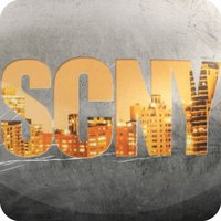 Safe Connect NY (SafecoNY)