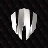 W Motors