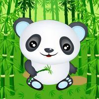 Panda Bear Run