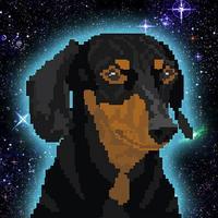 Space Dog Cru