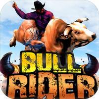 Bull Rider : Bull Riding Race