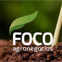 Foco Agronegócios