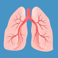 Pulmonology Medical Terms Quiz