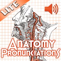 Anatomy Pronunciations Lite