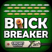 Brick Breaker CRICKET Edition