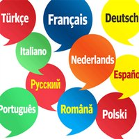 Foreign Language Phrases