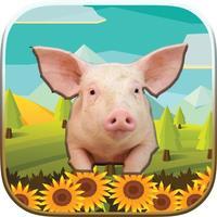 Animals World Puzzle Game