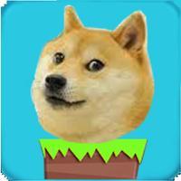 Doge JumpUp