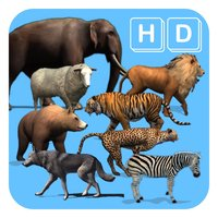 Animals Life Cycle - Mammals And Their Young