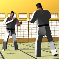 touch Karate (Universal)