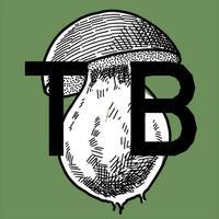 TB- Suspension of Disbelief AR