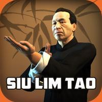 Ip Man Wing Chun Kung Fu : SLT