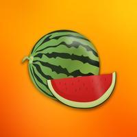 Fruit Stickers - Yum!