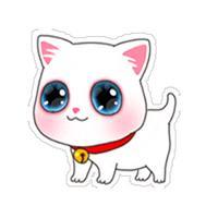 Lovely Cartoon Cat